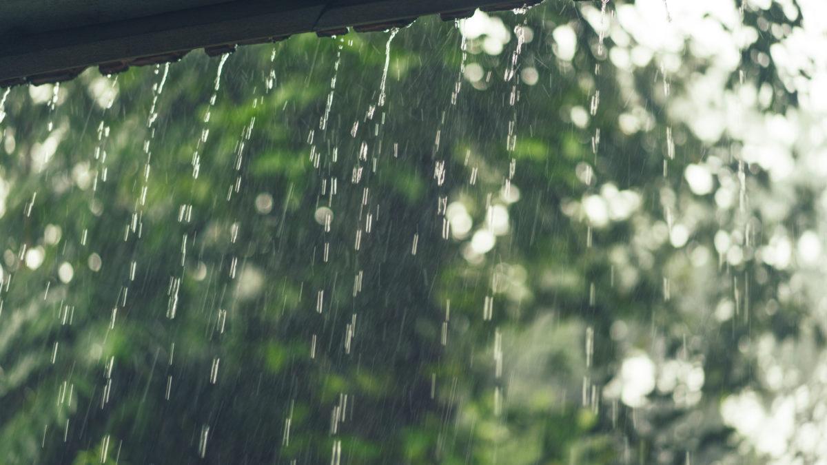 Sering Diremehkan Ternyata Air Hujan Memiliki Banyak Manfaat Royal Mansion